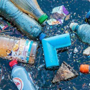 Transformar lixo em vida? Sim, pode participar e já amanhã