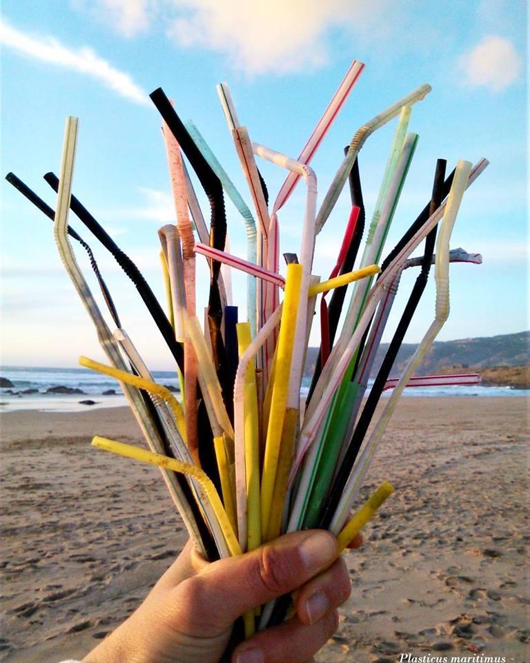 Movimento Claro quer acabar com o uso de palhinhas de plástico em Cascais