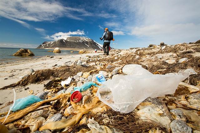 Na região de Lisboa, o comércio de Cascais e Estoril vai abolir uso de canudinhos, sacolas e garrafas de plástico